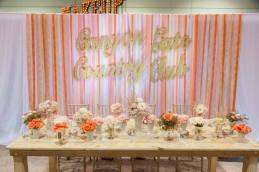 reach-brides_-2017-winter-bridal-spectacular-show_02